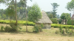 wayside hut, kenya