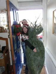 Arriving home with the Christmas Tree